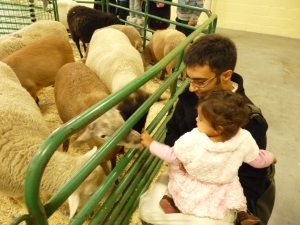 Eryn, baba, and some sheep.